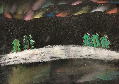 Polarlichter (10)