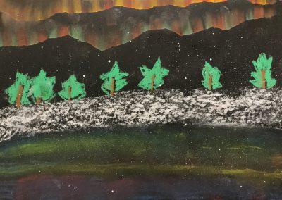 Polarlichter (14)