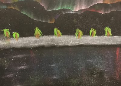 Polarlichter (8)
