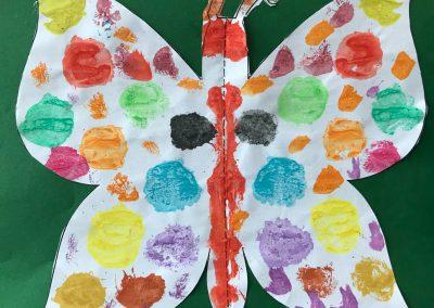 Schmetterlinge1905