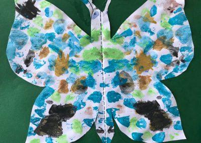 Schmetterlinge1906