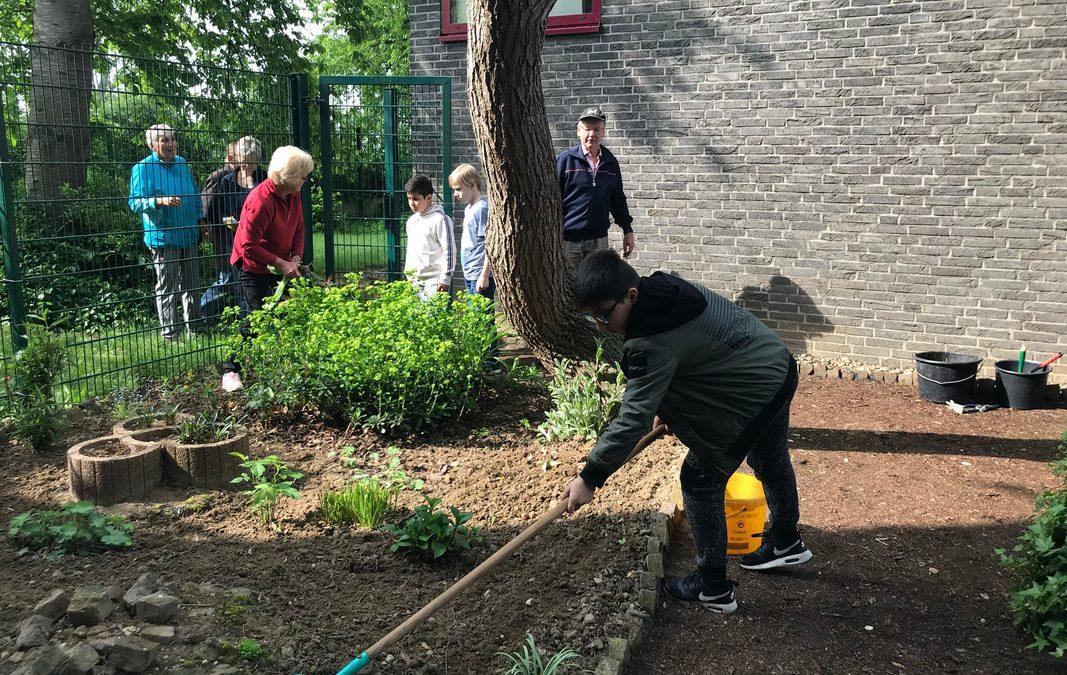 """Gärtnern im Schulgarten in Kooperation mit dem """"Netzwerk 55plus"""" der Stadt Kerpen"""