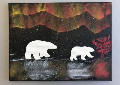 Polarlichter (15)