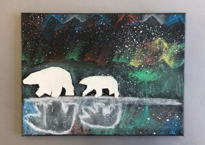 Polarlichter (17)