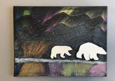 Polarlichter (18)