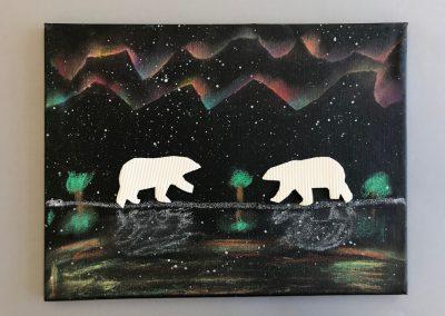 Polarlichter (19)